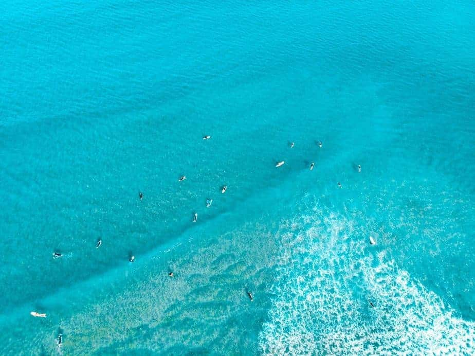 aerial view of surfers at the ocean